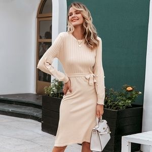 Pearl Detailed Beige Knit Belted Dress